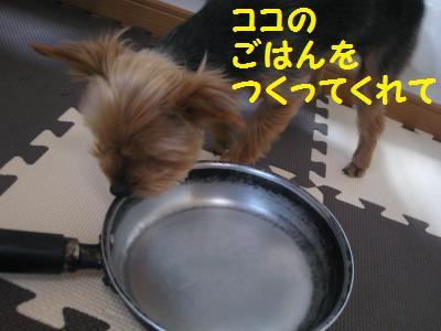 20090418furaipan4