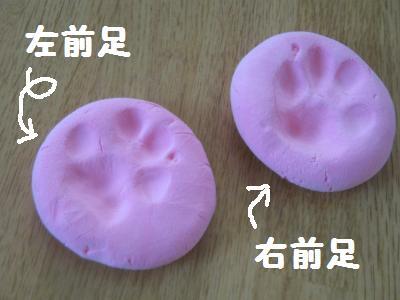 20090629ashigata1