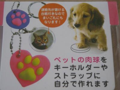 20090629ashigata2
