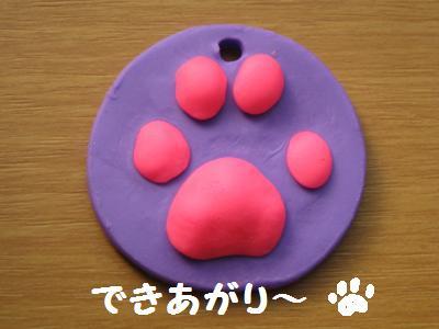 20090629ashigata4