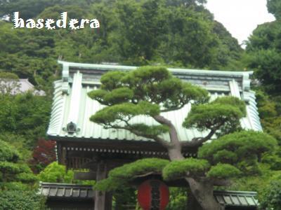 20090705yokohama6