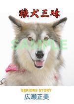 hyou01web.jpg