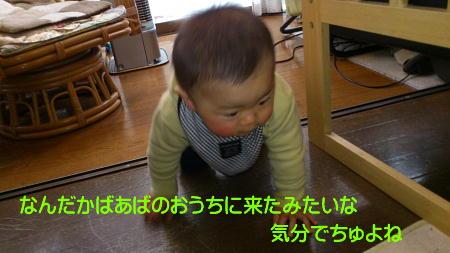 12020416_1.jpg