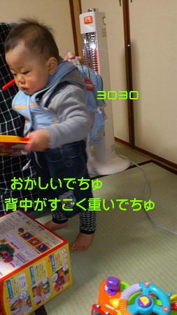 12021209_1.jpg