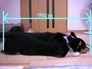 SSCN5530.jpg