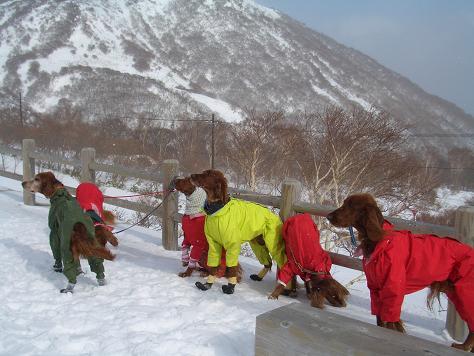 茶臼岳 峰の茶屋 051