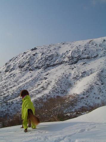 那須岳と新年会 009