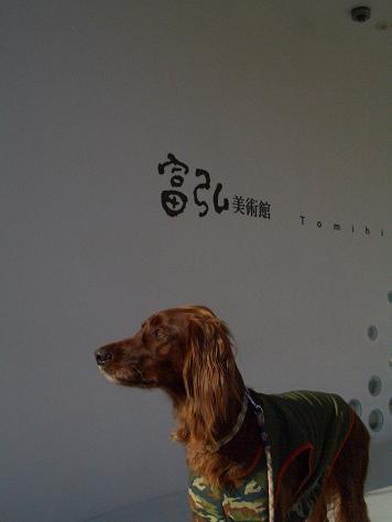 戦場ヶ原と富弘美術館 024