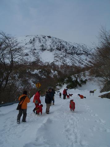 2月6日の那須岳 004