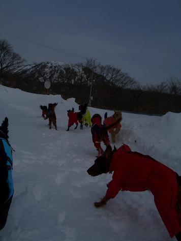 2月6日の那須岳 006