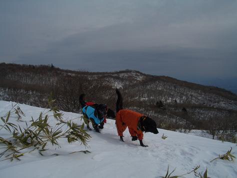 2月6日の那須岳 011
