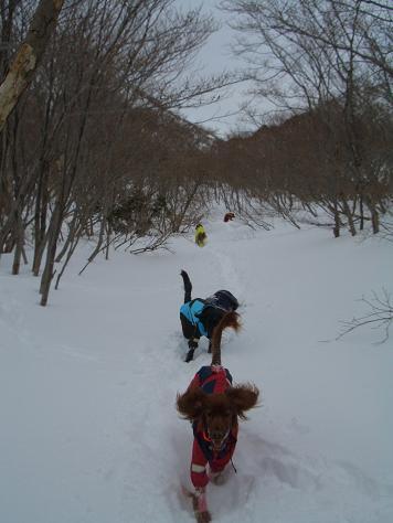 2月6日の那須岳 025