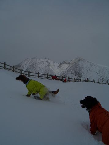 2月6日の那須岳 036