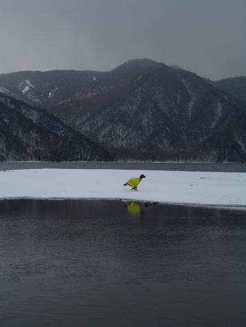 中禅寺湖 005