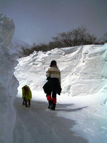 3月4日那須岳散歩 047