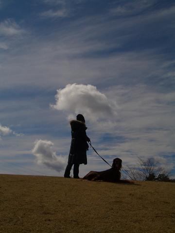 那須野が原公園と野花カフェ 006