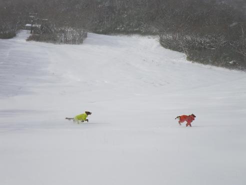 今季初の雪遊び 006