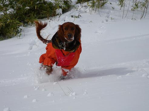 今季初の雪遊び 037