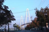 081123 橋2