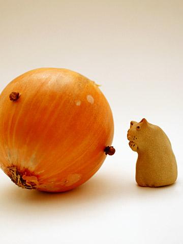 丸ごと玉葱&ニャア