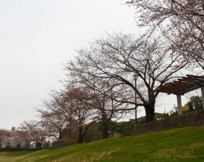 大宮第2公園