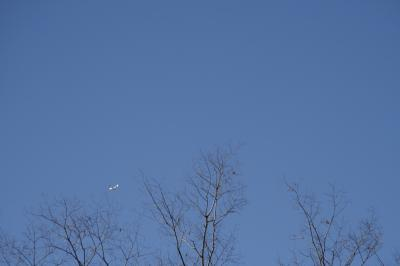青空を舞う飛行機