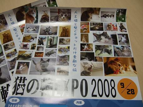20081007 033