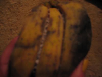 3 バナナ