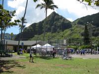 hawai41