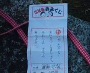 tiyohatumou3.jpg
