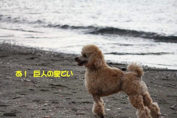 2010010309.jpg