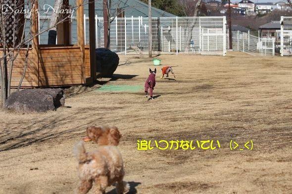 2010011403.jpg