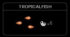 """TROPICALFISH"""