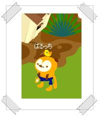 """""""鳥さんと・・・"""""""