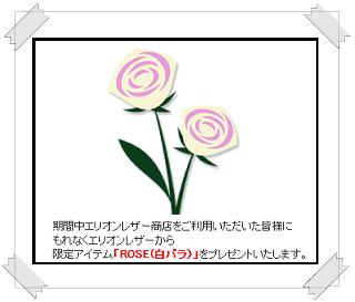 """""""白いバラ"""""""