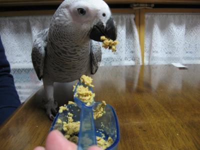 スプ~ンで食べれられるよ