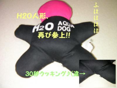 H2O人形
