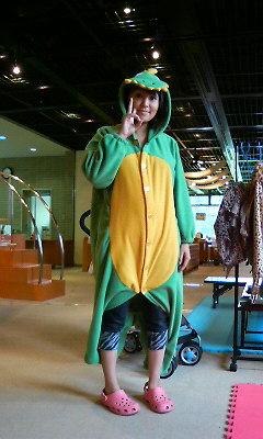 200809071617001恐竜.jpg