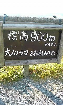 200810191513000.jpg