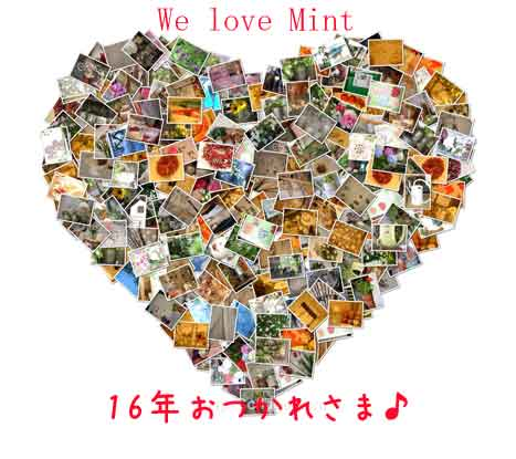 mint04