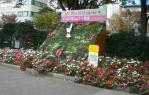fukushima2311133.jpg