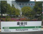 kanayagawa2311134.jpg