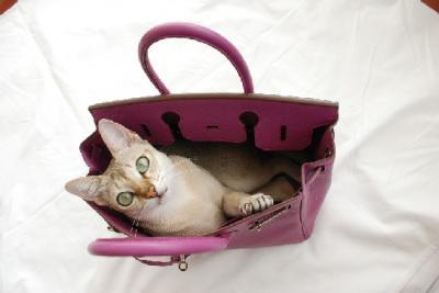 ディアモン鞄