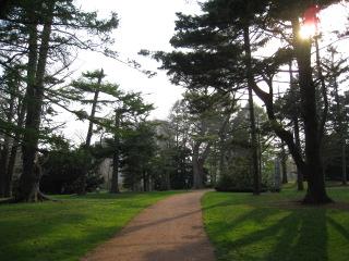 08植物園