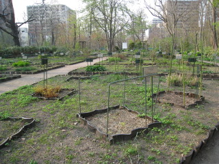 09植物園