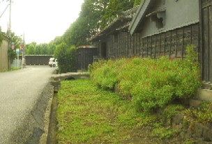 20080916g.jpg
