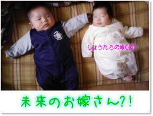 newphoto_convert_20080313222845.jpg