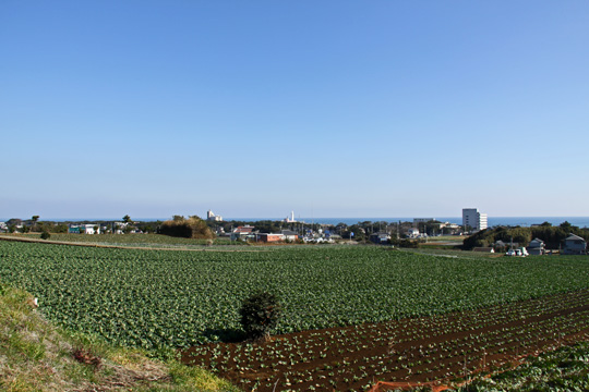 20090125_inubo-04.jpg