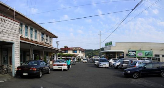 20090503_shin_kanaya-07.jpg
