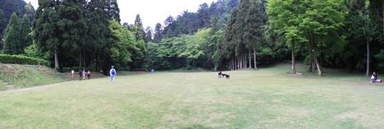 20090505_hachioji_castle-04.jpg